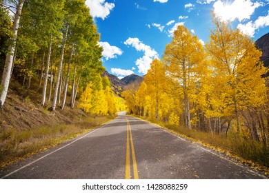 Colorful Autumn scene on countryside road in the sunny morning