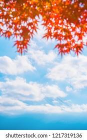 Colorful autumn season & Mountain Fuji in morning fog and red leaves at lake Kawaguchiko, Japan Mountain Fuji with colorful red maple leaves from Kawaguchi Lake - Yamanashi, Japan