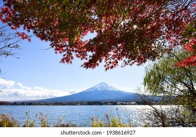 Colorful Autumn Season and Mountain Fuji at lake Kawaguchiko Japan.
