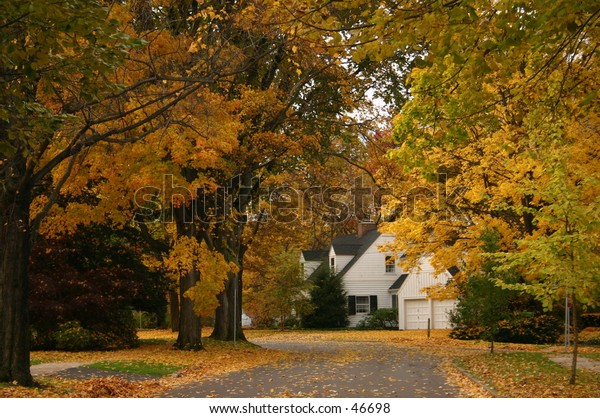 A colorful autumn street leading to a home