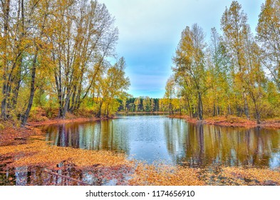 Colorful autumn sunny landscape on the lakeside with reflection of blue sky, clouds and trees on the water with ripple and golden leaves covered