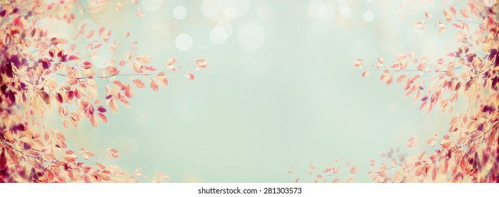 colorful autumn tree branch with red leaves on light blue bokeh background, banner for website