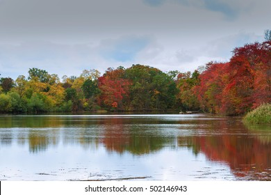 Colorful autumn trees on the lake Autumn forest river water