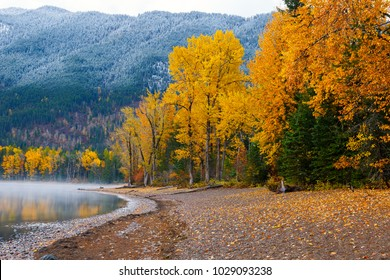Colorful autumn trees on shore of Lake McDonald, Glacier National Park, Montana