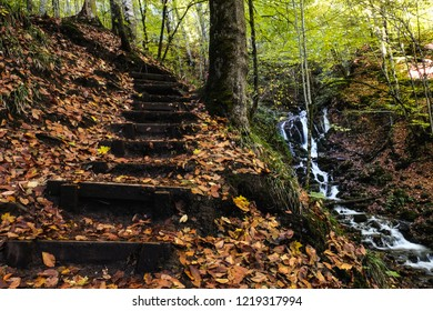 Colorful autumn,wood and stone stair. Excellent image Landscape photograph of yedigoller waterfalls. Yedigoller, Turkey.