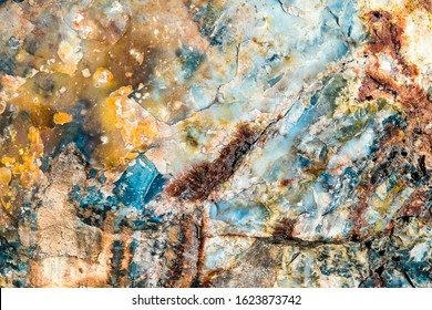 colorful background texture of old  petrified wood log