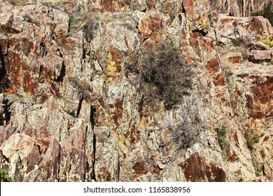 Colorful background textured wall from Black Canyon of the Gunnison National Park and recreation area at Pulpit Rock, near Montrose, Colorado, USA.