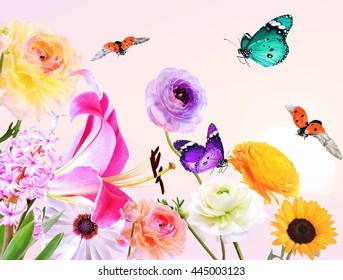 Colorful beautiful flowers with butterflies and ladybugs flying around. Sweet  sky in the blurred background. Summertime nature abstract