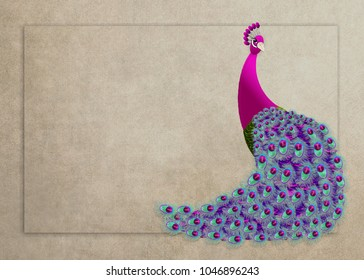 Colorful and beautiful graphic illustration background of a proud peacock.  (4 different backgrounds)