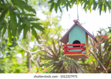 colorful bird house with bird nest