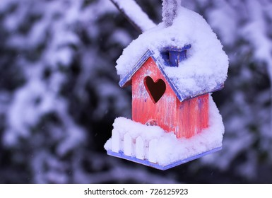 Colorful birdhouse with heart cutout and white picket fence covered in snow hanging from tree branch with snow covered evergreen trees blurred in background; winter nature background with copy space