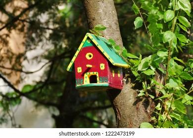 Colorful birdhouse in the tree in the garden