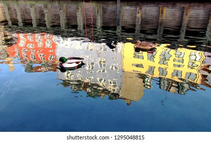 Colorful Building Reflections with Ducks