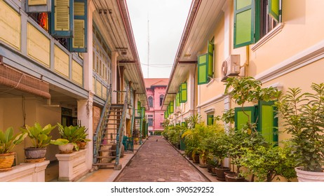 colorful buildings and the narrow way with green plants