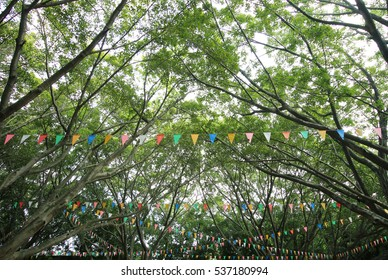 Colorful bunting flags against green trees in daytime