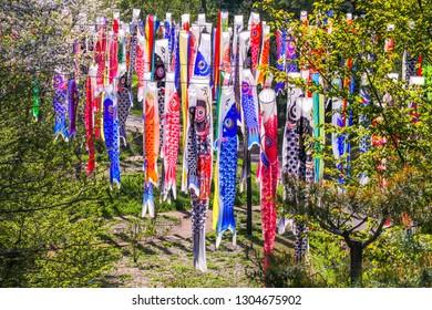 Colorful carp of Koinobori festival or carp-streamer kite  to celebrate Children's Day in Nagano Prefecture, Japan.