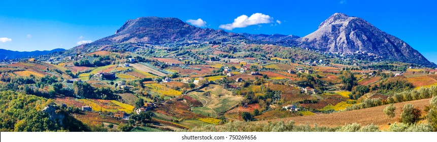 Colorful carpet of vineyards in autumn colors. Benevento, Italy