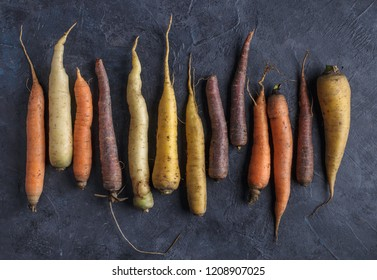 Colorful carrots arrange in pattern on dark  background. Top view