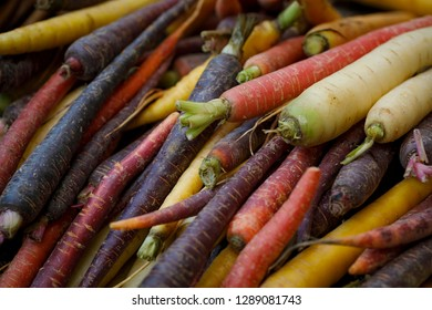 colorful carrots organic bio vegetable