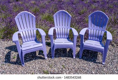Colorful chairs at the lavender farm in Washington state