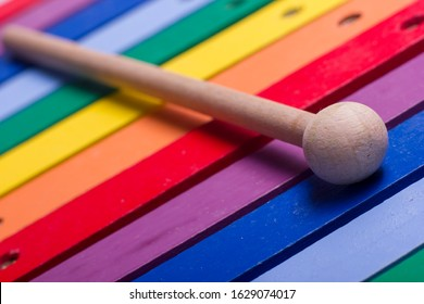 Colorful child wooden xylophone isolated on white background