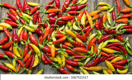 colorful chilli peppers on wooden table . High angle view and full frame