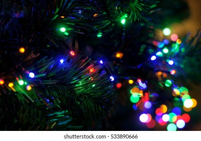 colorful Christmas lights hanging in a tree