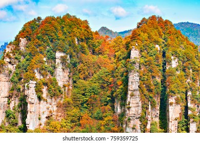 Colorful cliffs in Zhangjiajie Forest Park at sunny morning time. China.