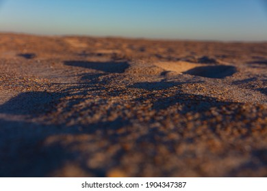 Colorful close-up image of grains of sand and broken seashells on the beach at sunset.