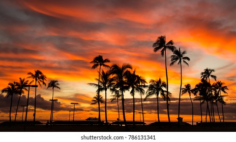 Colorful clouds at sunset with palm tree silhouette
