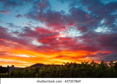 Colorful clouds at sunset. A spectrum of saturated colors in the sky. Blue, red, orange, yellow clouds. Sunset in a Napa Valley California vineyard.