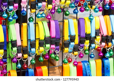 Colorful collar cat with small bell in shelves for sell
