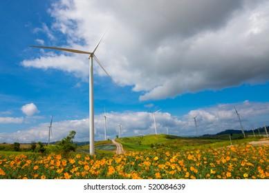 The colorful cosmos flower and big wind turbine is background location Khao Kho Phetchabun Thailand