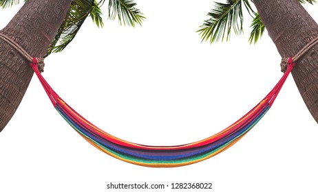 colorful cradle hang on coconut tree or palm tree isolated on white background ,Image for summer fun party travel concept.