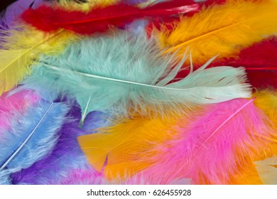 Colorful craft feathers background