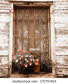 Colorful daisy flowers and cactus in pots placed on the window of the old stone house. Closed window with lace curtain, rusty lattice and open wooden shutters. (Arles, Provence, France) Aged photo.