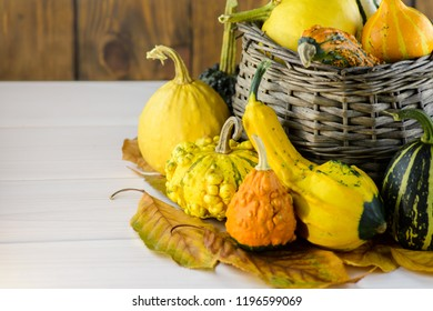 Colorful decorative pumpkins and gourds in a basket in autumn on wooden table.