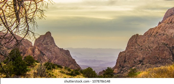 A colorful desert meadow with the bright Chisos Mountains surrounding it with a bland, evil looking desert beyond. Big Bend National Park.