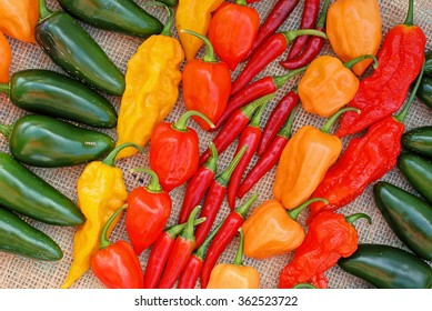Colorful display of different types of hot peppers