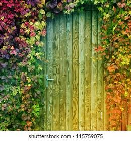 colorful door entrance