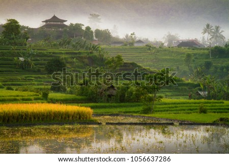 Colorful and Dramatic Bali Rice Fields. Sunrise in the village of Sidemen, reveals the beautiful rice fields in east Bali, Indonesia.