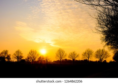 Colorful and dramatic sunrise or sunset in a countryside landscape with tree silhouettes