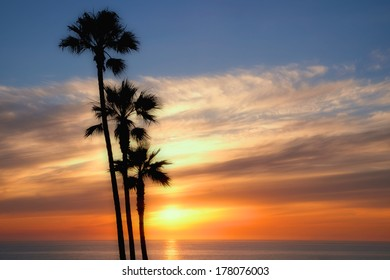 Colorful dream like filtered sunset on the ocean with multiple silhouetted palm trees in the foreground.
