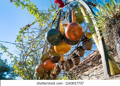 Colorful dried bottle gourds (or Calabash gourd, Flowered gourd, White flowered gourd) hanging in the garden gate