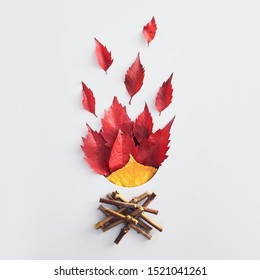 Colorful dried elm leaves and firewood. Fall composition flat lay. Vivid red and orange foliage and wooden branches isolated on white background. Bonfire idea. Autumn campfire concept