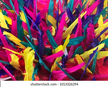 Colorful dyed feather, background and texture, top view