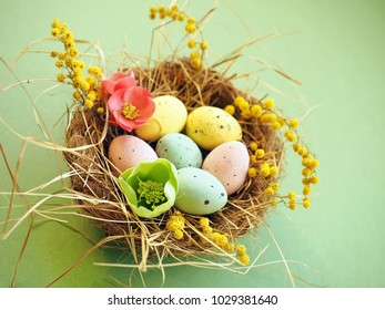 Colorful Easter background with Easter eggs in nest with flowers