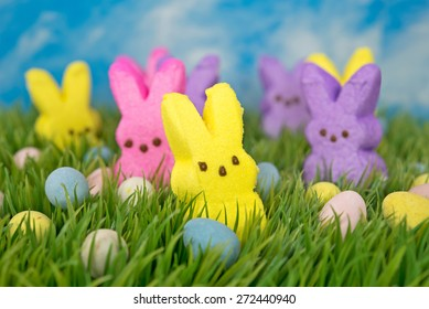 colorful Easter bunny candy with eggs in green grass and sky background