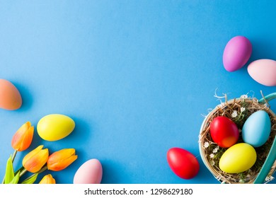 Colorful easter eggs in a basket and tulips on blue background. Top view. Copyspace