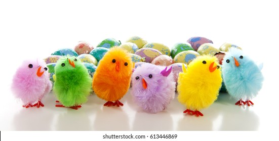 colorful easter eggs and chickens over white background